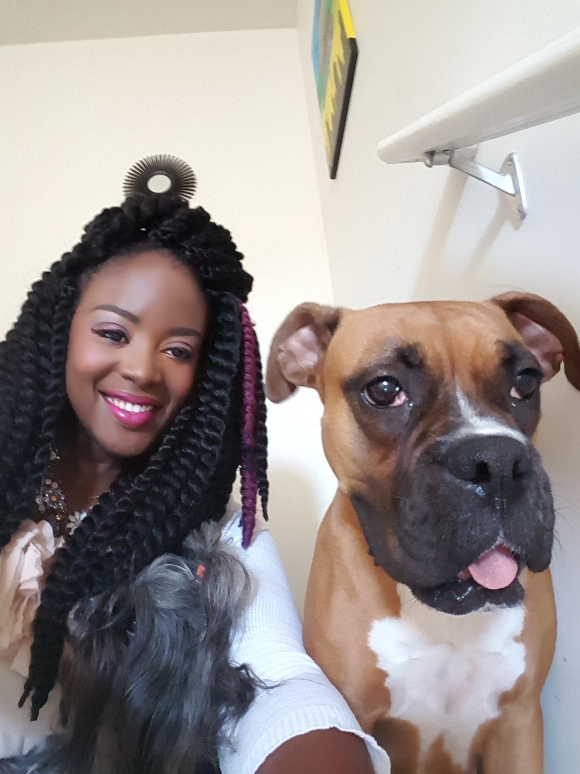 Sheryl's dog boarding