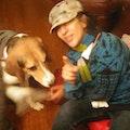 Yael@kendall dog boarding & pet sitting