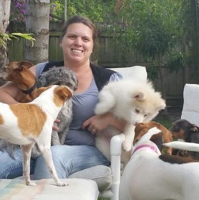 Roseli's dog day care