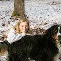 Ireland's Vacation Dog Boarding dog boarding & pet sitting