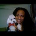 Lakisha's Doggy Hotel dog boarding & pet sitting