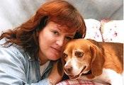 Trish's Naperville Dog Boarding dog boarding & pet sitting