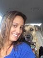 Krysten's Renfrew Dog Boarding dog boarding & pet sitting