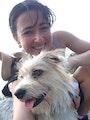 Maggie's Paw Pad dog boarding & pet sitting