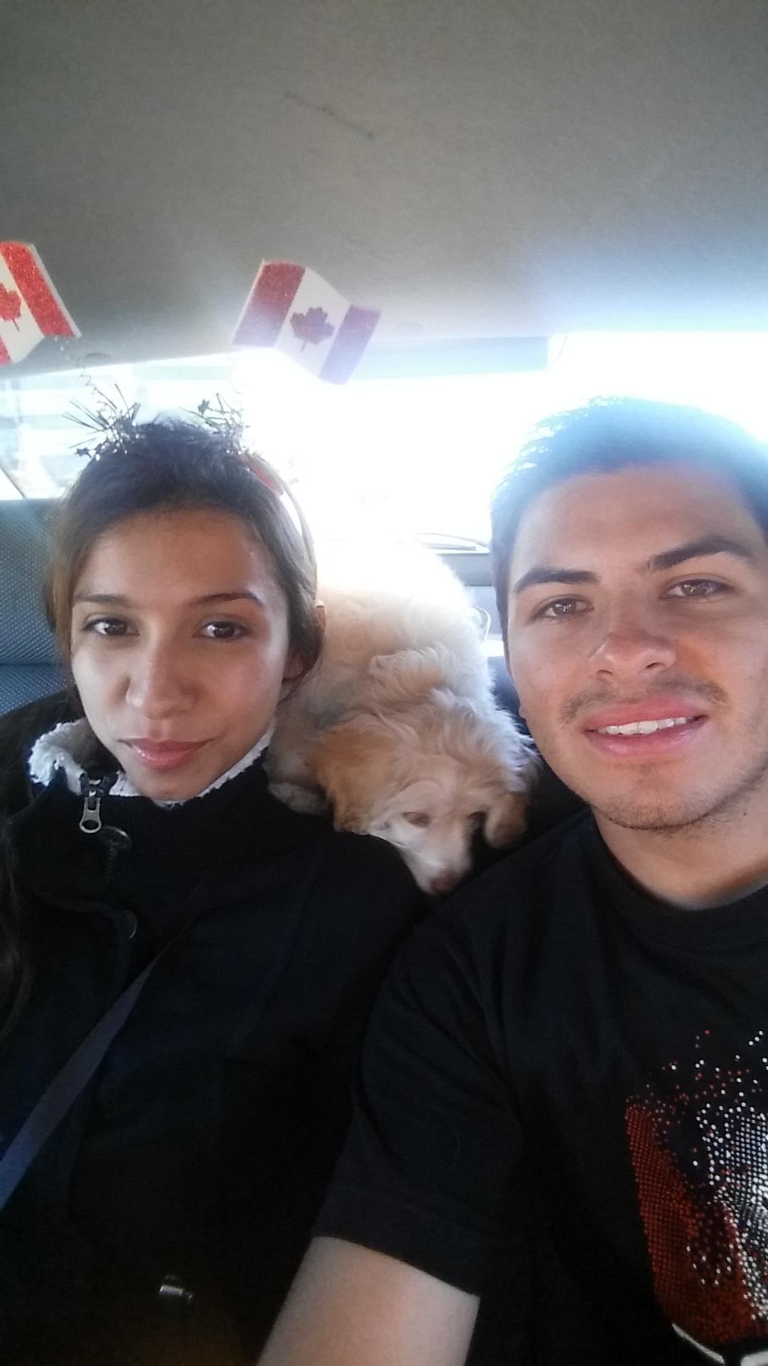 Rafael's dog boarding