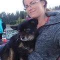 Highwood Extended Paws, Boarding... dog boarding & pet sitting
