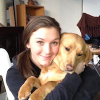 Dog Day Care Near Lincoln Nh