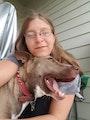 Taryn's Draper Doggy Days dog boarding & pet sitting