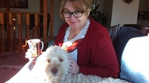 Renee Loves Dogs- South Edmonton dog boarding & pet sitting