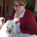 Renee Loves Dogs- South Edmonton dog boarding & pet sitting