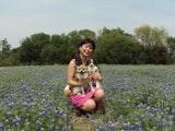 Auntie Satomi's dog boarding & pet sitting