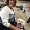 Cozy's small dog care services dog boarding & pet sitting