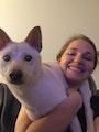 Audra's Puppy Vacay! dog boarding & pet sitting