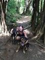 Oahu Dog Nanny dog boarding & pet sitting