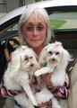 Loving Care by Sandi dog boarding & pet sitting