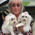 Loving Care by Sandi dog boarding & pet sitting