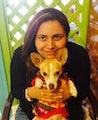 Kasy's Dog Sitting dog boarding & pet sitting