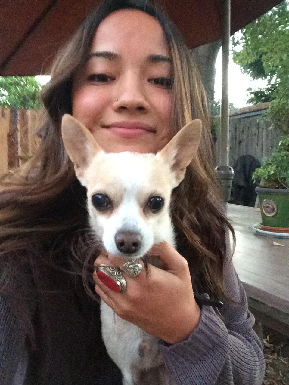 Jade & Sarah's dog day care
