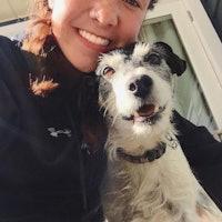 Maddy's dog boarding