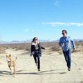 Long walks in Griffith Park dog boarding & pet sitting