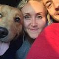 Golden paw dog house dog boarding & pet sitting