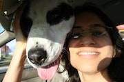 Dog sitter for any type/kind dog boarding & pet sitting
