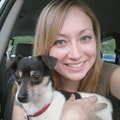Chelsea's Sitting Services dog boarding & pet sitting
