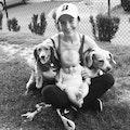 Courtney's boarding dog boarding & pet sitting