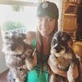 Julie's Pet Sitting - The Village dog boarding & pet sitting