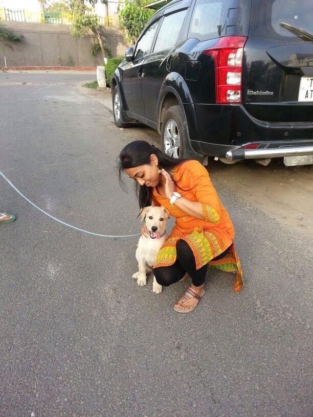 Shreya's dog boarding