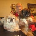 Larry's Doggie Care and Boarding dog boarding & pet sitting