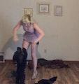 Puppy Inn :) dog boarding & pet sitting