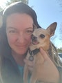 Four Paws Doggy Home dog boarding & pet sitting