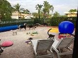 Beach Dog Limited dog boarding & pet sitting