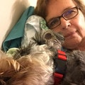 Bethesda Pet Care dog boarding & pet sitting