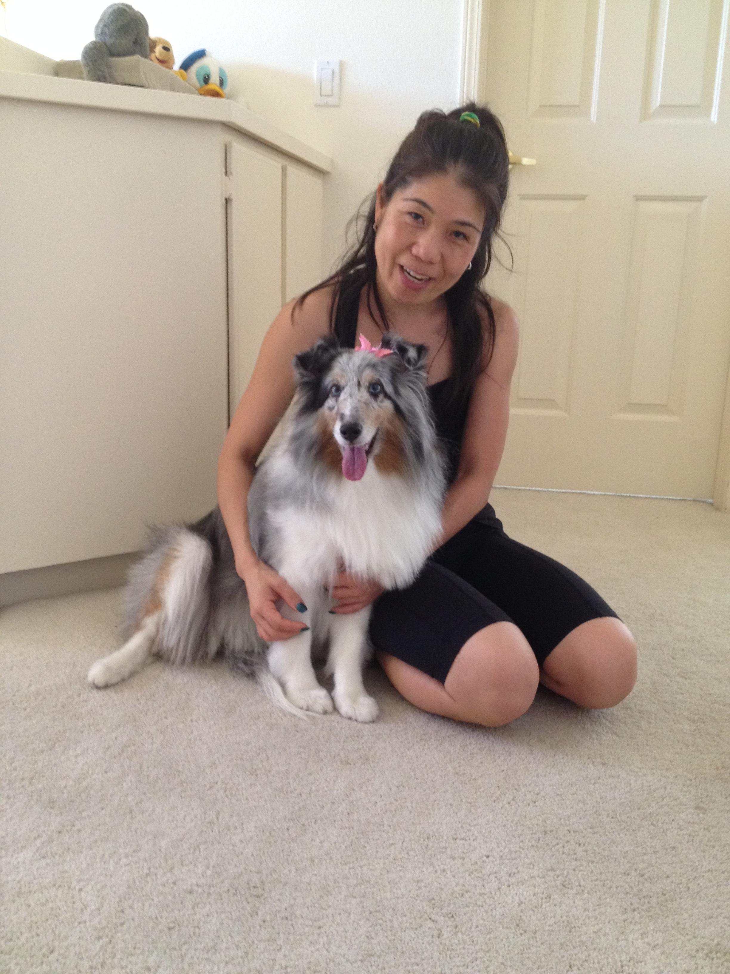 Yumi 's dog boarding