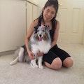 Lea's doggie care center dog boarding & pet sitting
