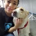 Woofer Care dog boarding & pet sitting