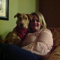 Dawn's Dog Boarding dog boarding & pet sitting