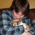 Best Friend Training Center dog boarding & pet sitting
