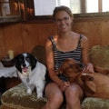 Nicole's Canine Services dog boarding & pet sitting