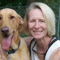 Constant Companion, LLC dog boarding & pet sitting