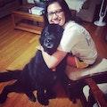 Jenna's Doggy Play Palace dog boarding & pet sitting
