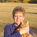 Karen's Shadle Home Away From Home dog boarding & pet sitting