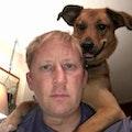 ROGMOORE HIGHLAND PARK dog boarding & pet sitting