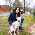 A Loving Family for Your Furry Pal dog boarding & pet sitting