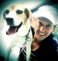 Kat's TailwagVille dog boarding & pet sitting