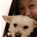 Angela's Doggy Care! dog boarding & pet sitting