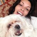 Diana's Doggie Dorm dog boarding & pet sitting