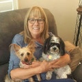 Dona's dog care in Seven Hills dog boarding & pet sitting